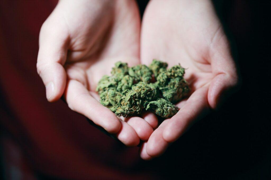 Leczenie medyczną marihuaną